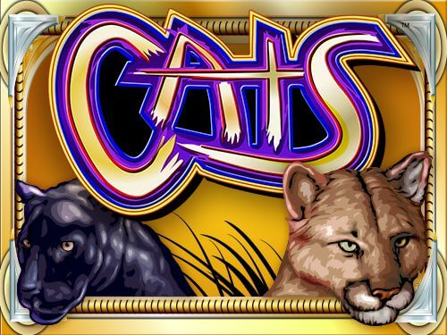 Trucos y secretos para ganar a la slot de Cats - Gatos