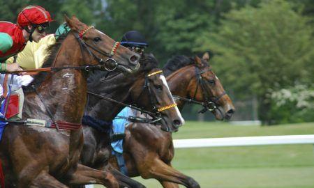 ¿Cómo ganar dinero en las apuestas de caballo?