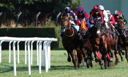 apuesta-carrera-caballo
