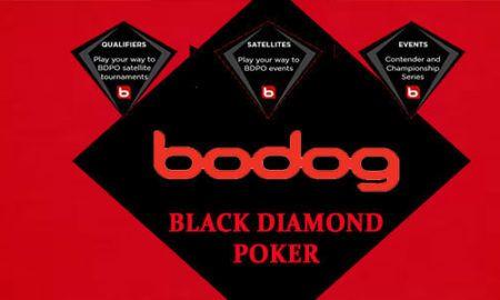 ¿Cómo jugar al casino en Bodog?
