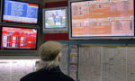 ¿Cómo apostar caballos online?